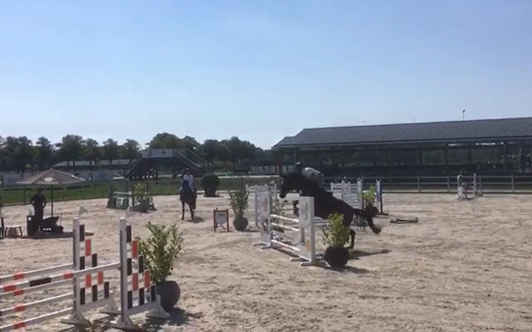 Show Jumping Competition Analysis