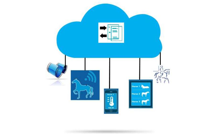 EquiCloud - Equestrian Cloud Rider Monitoring System
